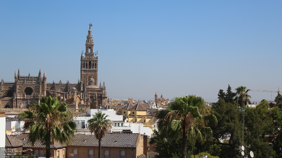 A favorite view from Hotel Alfonso XIII, Seville